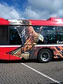 Go North East bus 5242 Scania CN230 Omnicity NK56 KHL The Red Kite livery Metrocentre rally 2009 pic 5.JPG