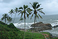 Goa - An Overcast Season (28).JPG