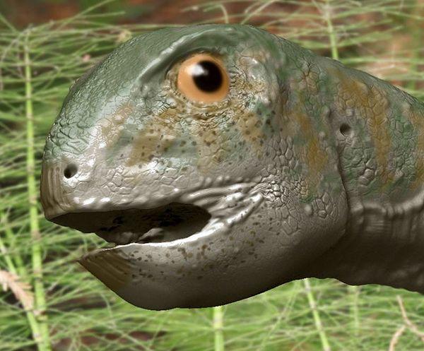 Gobiceratops