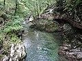 Gorges de Vintgar, Eslovènia (agost 2013) - panoramio (1).jpg