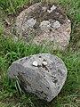Gravestones in Jewish Cemetery - Tykocin - Poland (35483497653).jpg