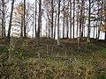 Gravfältet Kärnekullen (RAÄ-nr Kulltorp 26-1) 6577.jpg