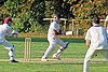 Great Canfield CC v Hatfield Heath CC at Great Canfield, Essex, England 57.jpg