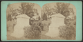 Griffith, from Robert N. Dennis collection of stereoscopic views.png