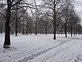 Großer Garten, Dresden in winter (1060).jpg