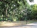 Großer Tiergarten mit Neuem See im Hintergrund in Berlin Tiergarten.JPG
