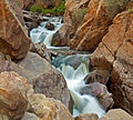 Guadalupe River (3679937374).jpg