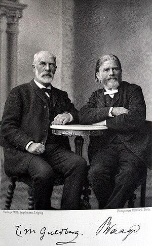 Cato Maximilian Guldberg - Guldberg and Waage