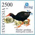 Habroptila wallacii 2012 Indonesia stamp.jpg