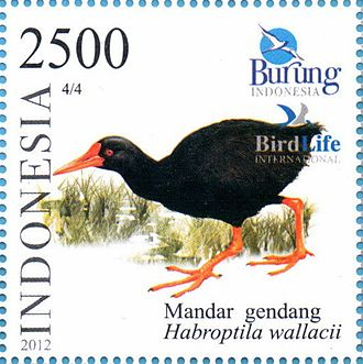 Invisible rail - Habroptila wallacii on a 2012 Indonesian stamp