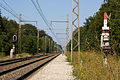 Halte Fontainebleau - Forêt IMG 8526.jpg