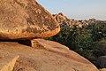 Hampi, India, Huge granite rock boulders amidst palm trees in Hampi landscape.jpg