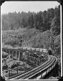 Hapuawhenua Viaduct ATLIB 333386.png