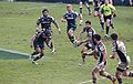 Harlequins vs Sale Sharks 2013 (1).jpg