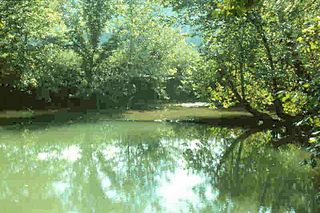 Harrison Spring spring in Indiana, United States of America