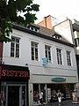 Hasselt - Huis De Bruyne Visch.jpg