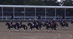 Hengstparade Warendorf 1