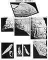 Hierakonpolis Great Mace.jpg