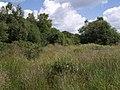 Hollow Moor - geograph.org.uk - 490250.jpg