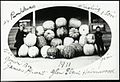 Holmwood Public School - Pumpkins (21421635643).jpg
