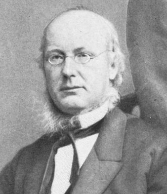 1872 Democratic National Convention - Image: Horace Greeley