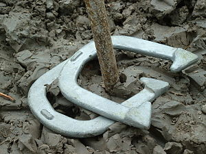 Horseshoes - Horseshoes