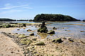 Hoshizuna-no-hama Iriomote Island11bs3s4350.jpg