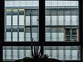 Hotelfenster Wiesbaden 1070199.jpg
