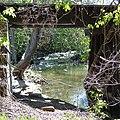 Humbug Creek Railroad Trellis - panoramio.jpg