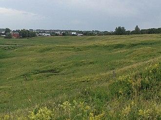 Suzdalsky District - Ilyinsky meadow, Suzdalsky District