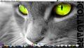 IGolaware-Linux-Manhatten.png