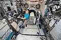 ISS-58 Anne McClain works inside the Kibo lab (3).jpg
