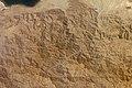 ISS017-E-9802 - View of Eritrea.jpg