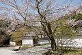 Ichijoji Kasai25ss4272.jpg