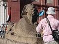 Il Cairo Museo Egizio (2375797727).jpg