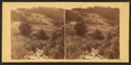 In gold miner's glen, Plymouth, Vt, by Gage, F. B. (Franklin Benjamin), 1824-1874.png