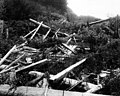 Indian community house on the Washington coast, in ruins in 1910 (CURTIS 967).jpeg