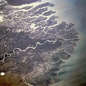 Indus River Delta - The Indus River Delta, as seen from space.