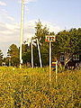 Inlandsbanan-gavunda-91.JPG