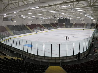 Ice Arena Wales - Inside the Ice Arena Wales in February 2016