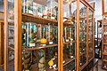 Institutul Botanic, Muzeul Botanic, Cluj-Napoca-9948.jpg