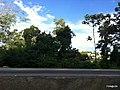 Itapema - SC - panoramio (2).jpg