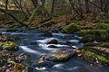 Jõelähtme jõgi. 01.jpg