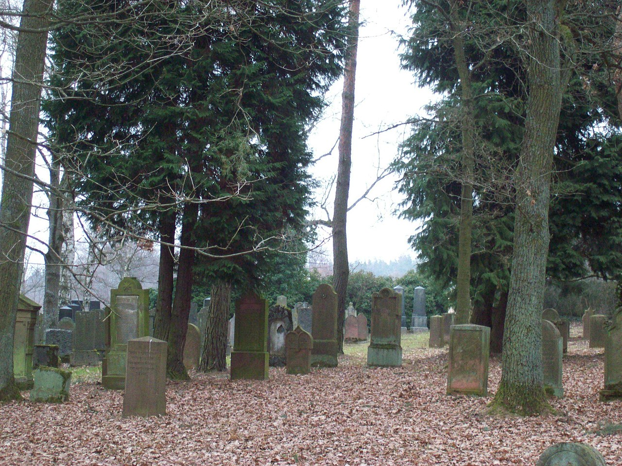 Jüdischer Friedhof bei Aschaffenburg zwischen Obenau und Schweinheim6.jpg