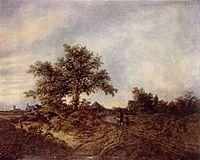 Jacob Isaaksz. van Ruisdael 011.jpg