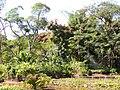 Jardim das Aroeiras, Goiânia - GO, Brazil - panoramio (1).jpg