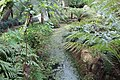 Jardin Feteira Rainha Sintra 14.jpg