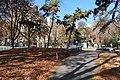 Jardins du Trocadéro automne 5.jpg