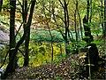 Jazierka V. - panoramio.jpg