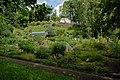 Jena - botanical garden 01 (aka).jpg